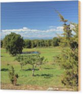 Orchard 1 H Wood Print