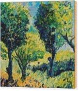 Orchard 562 Wood Print