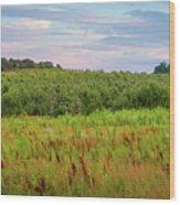 Orchard Hills Wood Print