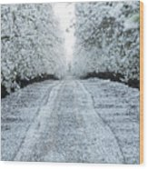 Orchard In White Wood Print