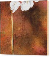 Orchid 4 Wood Print