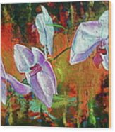 Orchid A Wood Print