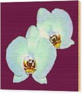Orchid Art 5 Purple Zurich 2000 Jgibney The Museum Zazzle Gifts Wood Print