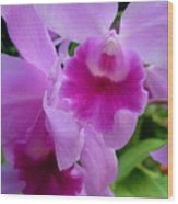 Orchid Deep Wood Print