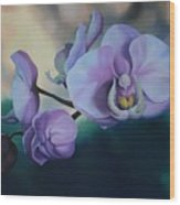 Orchid Dew Wood Print