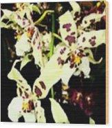 Orchid Fresco Wood Print