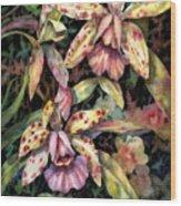 Orchid Garden Wood Print by Ann  Nicholson
