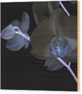 Orchid In Negative Wood Print