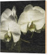 Orchid In White Wood Print