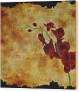Orchid Interplay Wood Print