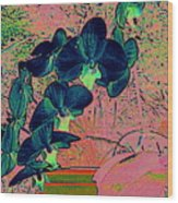 Orchid Japanaise Wood Print
