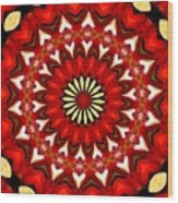 Orchid Kaleidoscope 9 Wood Print