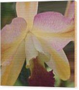 Orchid Light Wood Print