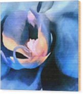 Orchid Lullaby Wood Print
