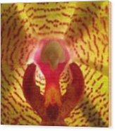 Orchid Macro Wood Print
