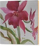 Orchid Morning Wood Print