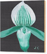 Orchid-paphiopedilum Bob Nagel Wood Print by M Valeriano