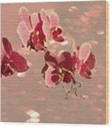 Orchid Petals In Pink Wood Print