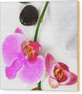 Orchid Spa Composition Wood Print
