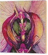 Orchid Tabernacle Wood Print