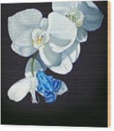 Orchid Treat Wood Print