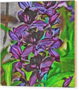 Orchids 1714 Wood Print