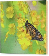 Orchids And Butterfly Painting Wood Print