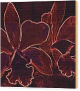 Orchids - For Pele Wood Print