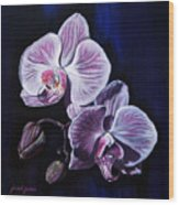 Orchids II Wood Print