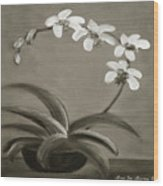 Orchids In Black And White Wood Print