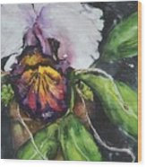 Orchids In July Wood Print