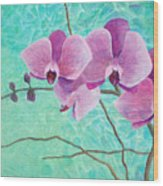 Orchids In Pink Wood Print