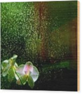 Orchids In The Rain Wood Print