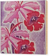 Orchids Of Orleans France 1967 Wood Print