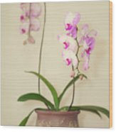 Orchids On Sideboard Wood Print
