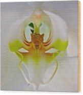 Orchids Secret Wood Print
