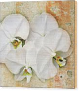 Orchids Upon The Rough Wood Print