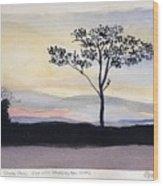 Ordiorne State Park, N.h. Wood Print