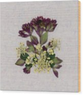 Oregano Florets And Leaves Pressed Flower Design Wood Print
