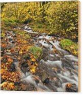 Oregon Autumn Beauty Wood Print