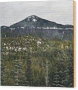 Oregon Cascade Range Forest Wood Print