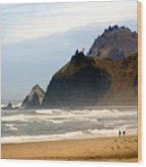 Oregon Coast 12 Wood Print