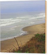 Oregon Coast 3 Wood Print