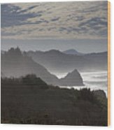 Oregon Coast #4 Wood Print