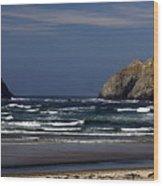 Oregon Coast 8 Wood Print