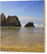 Oregon Coast 9 Wood Print