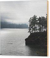 Oregon Coast Fog Wood Print
