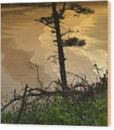 Oregon Coast Oo44 Wood Print