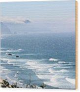 Oregon Coastline  Wood Print