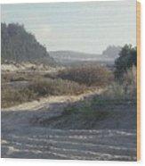 Oregon Dunes 5 Wood Print